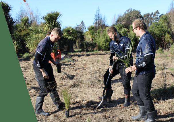 NOVUS team planting trees